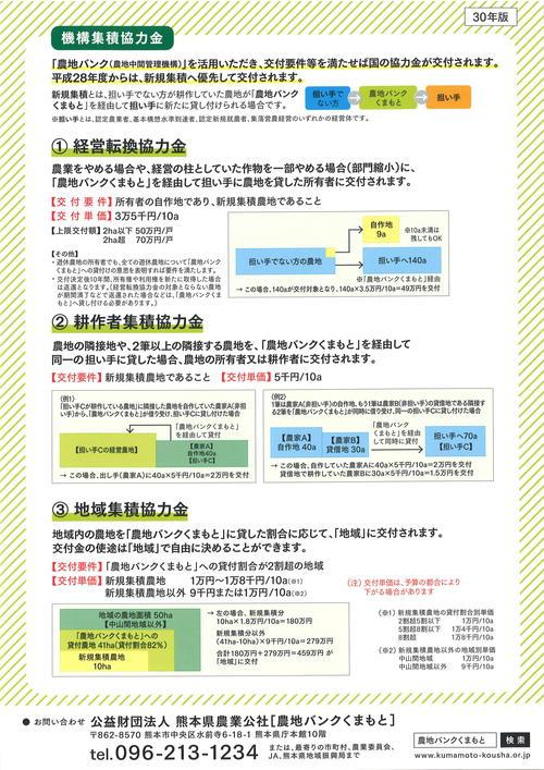 H30機構集積協力金.jpg