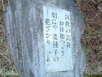 野口雨情の句碑(九十九曲り頂上)
